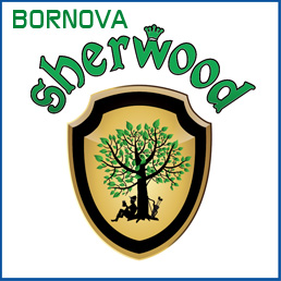 Seherwood Bornova Pub